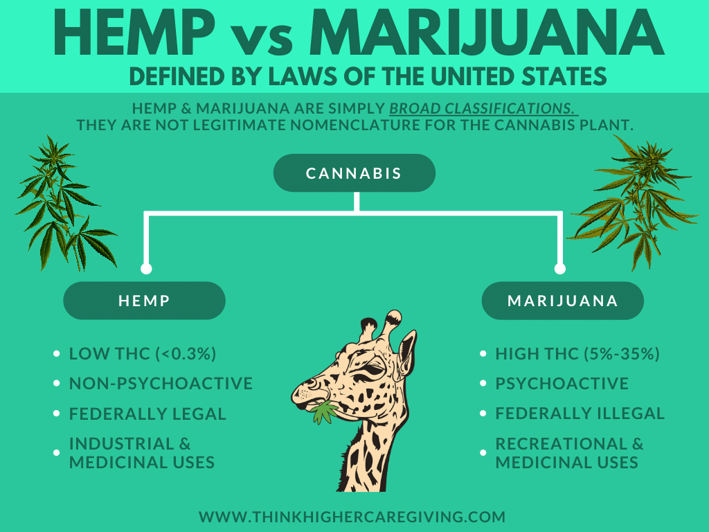 Hemp vs Marijuana - Think Higher